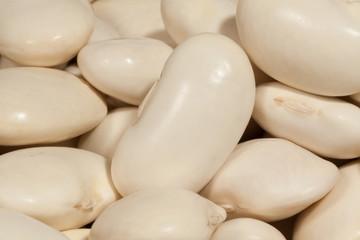 beans legume macro