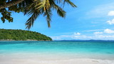 Exotic tropical beach stock footage