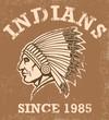 vintage indian mascot