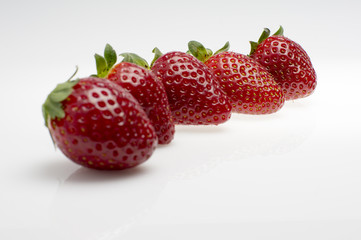 fresas en fila