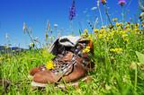 Fototapety Hiking Alps
