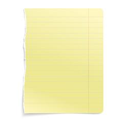 vector paper sheet