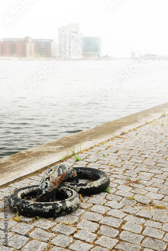 Old mooring rings on wharf of Copenhagen