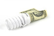 saving energy lamp and paper bill dollar