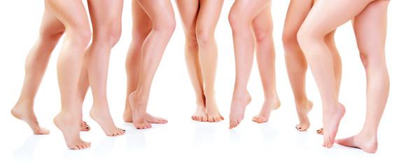 female legs, seven attractive caucasian young women over white