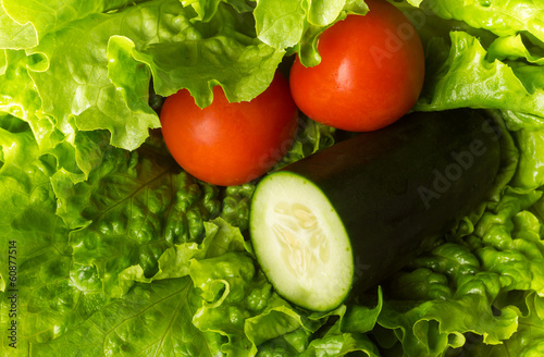 Fresh green lettuce tomato and cucumber
