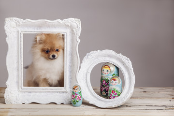 Dog, frame and russian dolls