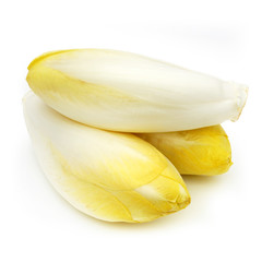 Endive - Chicory - Chicon - Witloof
