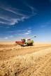 Leinwandbild Motiv Mähdrescher bei der Getreideernte