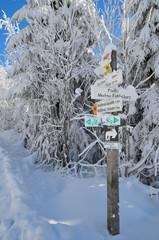 Winter Wandern Schild