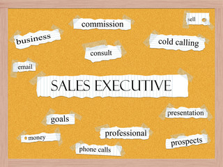Sales Executive Corkboard Word Concept