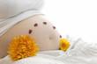 Babybauch mit Marienkäfern und Blumen