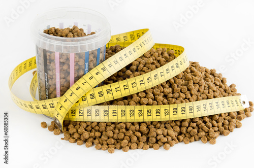 Measured dose of food for dog