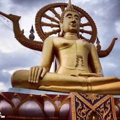 big golden buddha in thailand