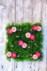 Blumenwiese auf Holzuntergrund