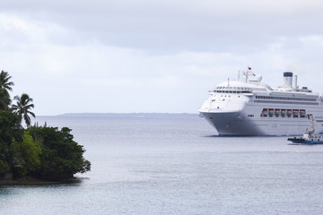 Cruise Entering Harbour