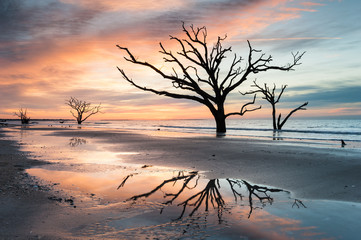 Charleston Botany Bay Boneyard Beach Sunrise Edisto Island