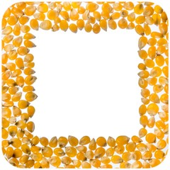 Popcorn kernel square frame