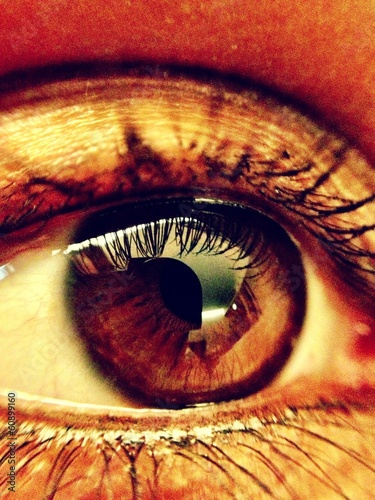 macro shot of a female eye