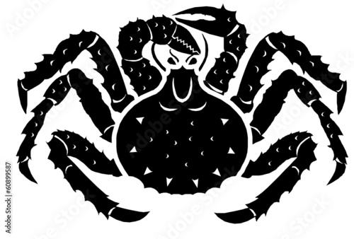 spider crab drawing