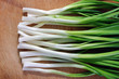close-up of fresh green onion