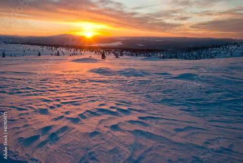 sunset in the tundra - 60904171