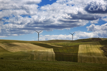 Wind turbines on a hill
