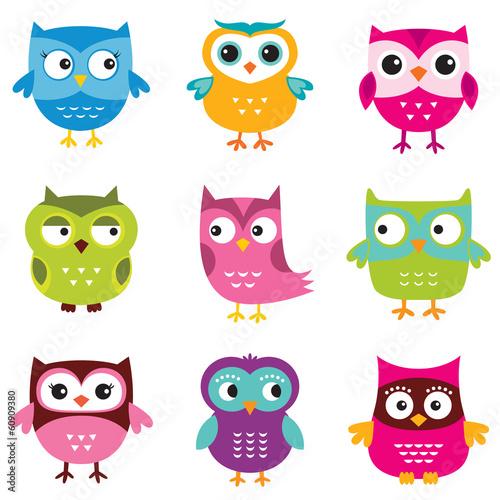 Fototapeta Owls set