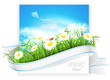 Spring banner. Vector