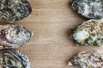 Whole oysters on wood