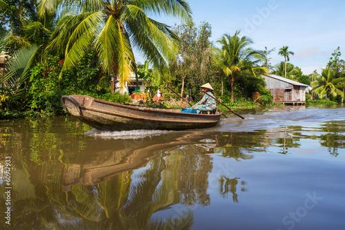 Mekong delta - 60917933