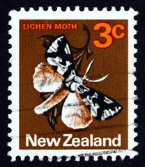 Postage stamp New Zealand 1970 Lichen Moth