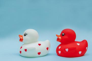 Following Ducks