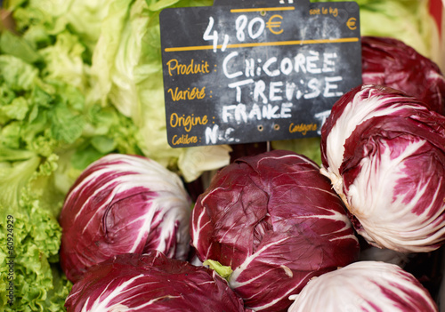 Fresh chicory vegetables