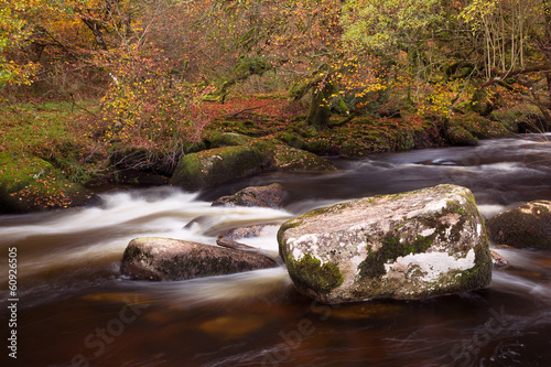 River Dart in autumn