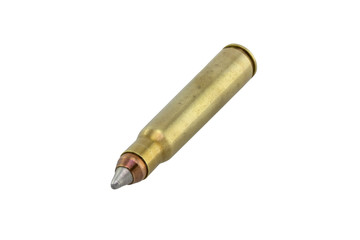 Silver gold hollow point bullet