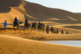 Caravan of tourists on camels passing the desert lake