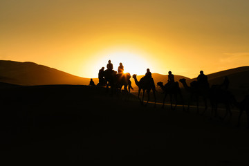 Silhouettes of tourists riding camels on dunes