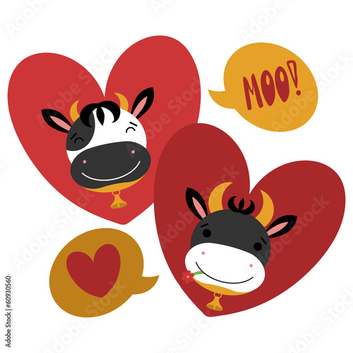Two cute cows in love