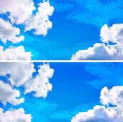 空 羽 背景