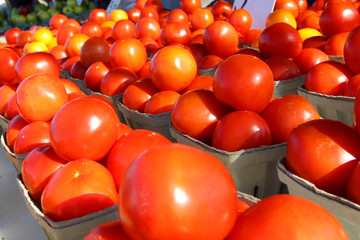 Stacks of Tomatoes at Famer's Market