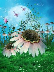 Stokrotki i motyle na zaczarowanej łące © Chorazin