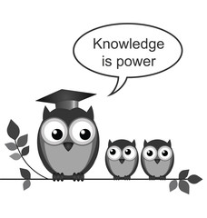 Owl teacher knowledge is power message