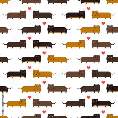 seamless pattern of dachshunds - 60938983