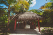 Landscape of tropical island beach, palm trees, buildings
