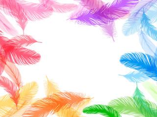 羽 虹 背景