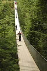 perspective of suspension bridge in a deep forest