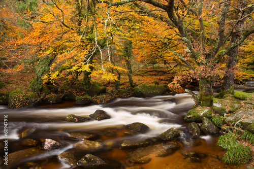 River Dart Dartmoor Devon Uk