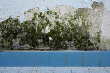 Hintergrund Wasserschaden im Badezimmer