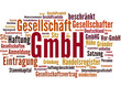 GmbH (Gesellschaft mit beschränkter Haftung)